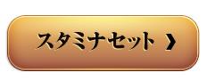 米沢牛通販の焼肉 スタミナセット